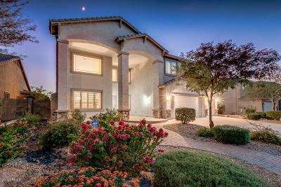 New River Single Family Home For Sale: 4321 W Kastler Lane