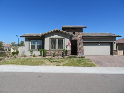 Litchfield Park Single Family Home For Sale: 13804 W Sarano Terrace