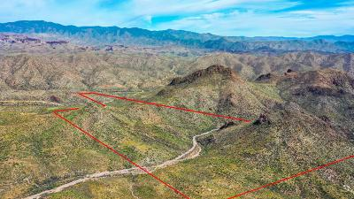 Morristown Residential Lots & Land For Sale: 4200 E Castle Hot Springs Road