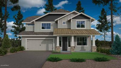 Flagstaff Single Family Home For Sale: 2866 W Alamo Drive