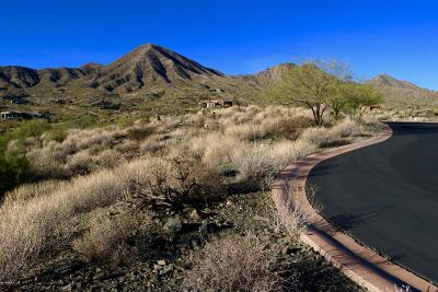 Fountain Hills Residential Lots & Land For Sale: 14247 E Coyote Court