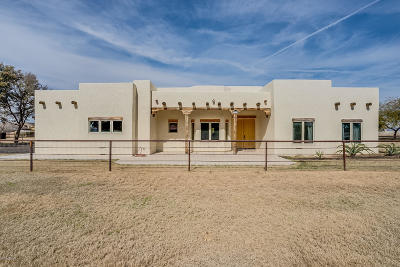 San Tan Valley Single Family Home For Sale: 2584 E Dryhead Road