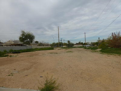 Mesa Residential Lots & Land For Sale: 955 S Stapley Drive
