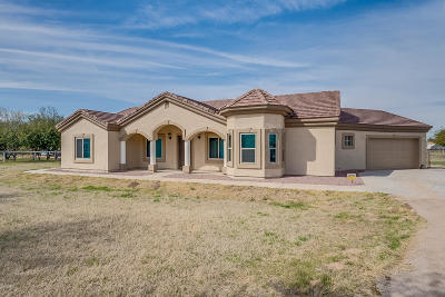 San Tan Valley Single Family Home For Sale: 4976 E Rogers Lane