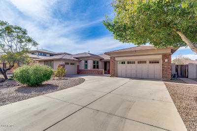 Gilbert Single Family Home For Sale: 4730 S Burma Road