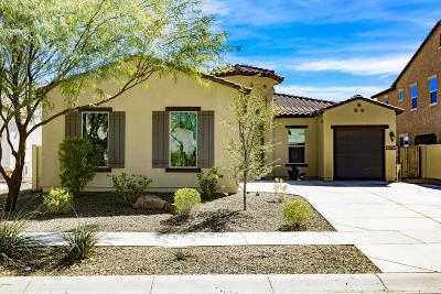 Chandler Single Family Home For Sale: 3893 E San Carlos Place E