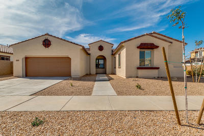 Queen Creek Single Family Home For Sale: 22738 S 228th Place