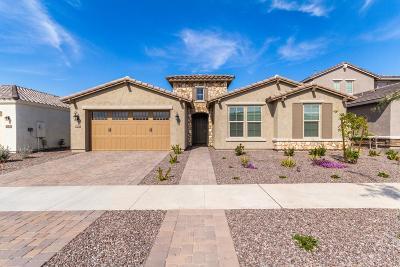 Mesa Single Family Home For Sale: 10556 E Relativity Avenue