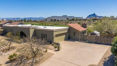 Fountain Hills Single Family Home For Sale: 16733 E Jacklin Drive