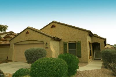 Maricopa Single Family Home For Sale: 43244 W Cowpath Road