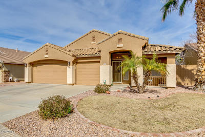 Gilbert Single Family Home For Sale: 3868 E Remington Drive