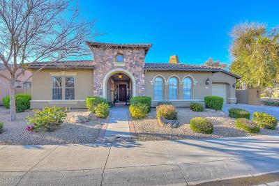 Goodyear Single Family Home For Sale: 15750 W Bonitos Drive