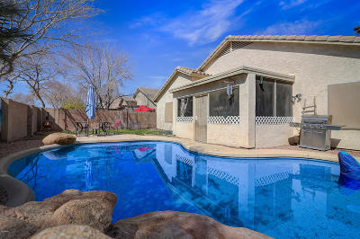 Peoria Single Family Home For Sale: 9201 W Lone Cactus Drive