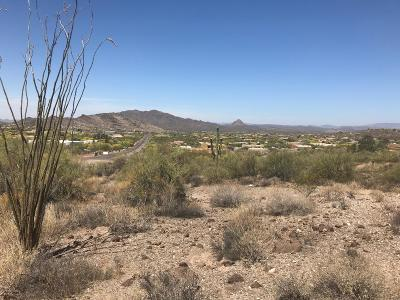 New River Residential Lots & Land For Sale: 2220 E Circle Mountain Road