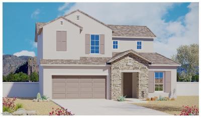 Phoenix Single Family Home For Sale: 6519 E Bluefield Avenue