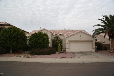 Glendale Single Family Home For Sale: 19829 N 67th Drive
