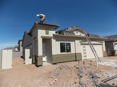 Apache Junction Single Family Home For Sale: 1896 W Road Agent Street