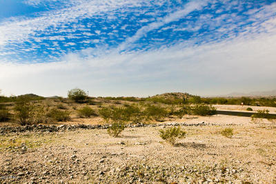 Goodyear Residential Lots & Land For Sale: 9320 S 176th Lane