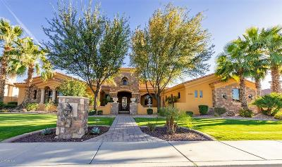 Chandler Single Family Home For Sale