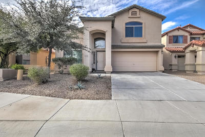 Maricopa Single Family Home For Sale: 20748 N Dries Road