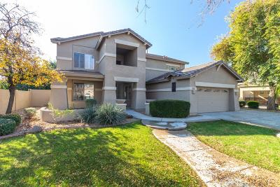 Chandler Single Family Home For Sale: 313 W Macaw Drive