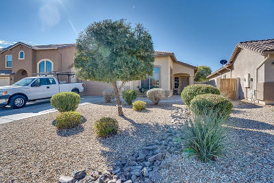 San Tan Valley Single Family Home For Sale: 635 W Agrarian Hills Drive