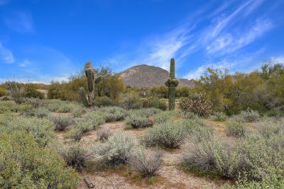 Scottsdale Residential Lots & Land For Sale: 25660 N Pima Road