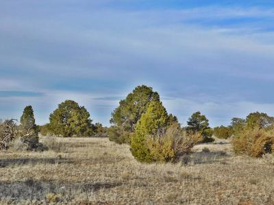 Coconino County, Yavapai County Residential Lots & Land For Sale: 3665 Red Butte Road