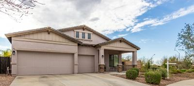 Peoria Single Family Home For Sale: 12795 W Lone Tree Trail