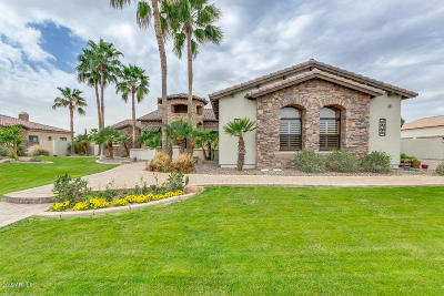 Chandler Single Family Home For Sale: 5660 S Gemstone Drive