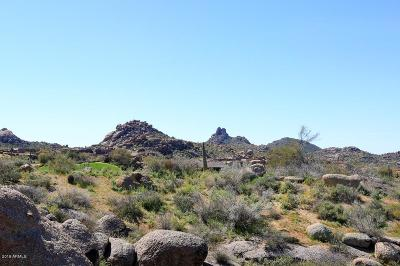 Scottsdale Residential Lots & Land For Sale: 28742 N 106th Place