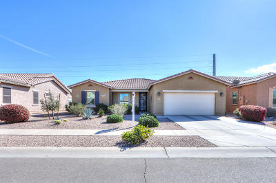 Casa Grande Single Family Home For Sale: 220 N Agua Fria Lane