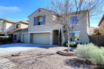 Maricopa Single Family Home For Sale: 43357 W Magnolia Road