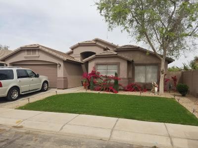 Maricopa Single Family Home For Sale: 43608 W Courtney Drive