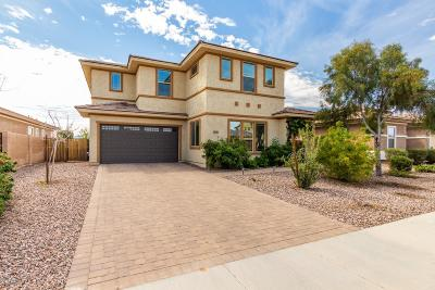 Gilbert Single Family Home For Sale: 3593 E Appleby Drive