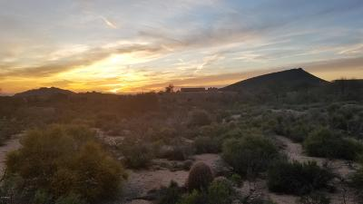 Scottsdale Residential Lots & Land For Sale: 10251 E Rising Sun Drive