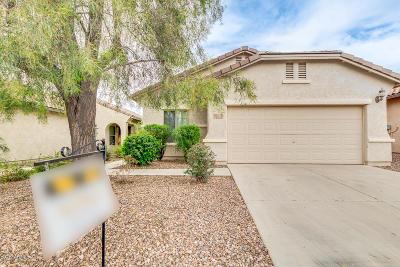 Florence AZ Single Family Home For Sale: $214,992