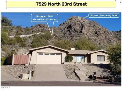 Phoenix Single Family Home For Sale: 7529 N 23rd Street