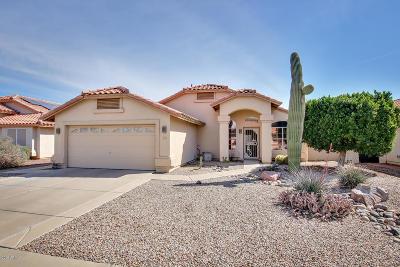 Avondale Single Family Home For Sale: 2619 N 123rd Avenue