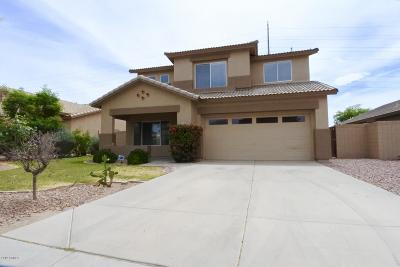 Gilbert Single Family Home For Sale: 3637 S Joshua Tree Lane