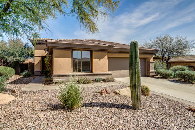 Anthem Single Family Home For Sale: 41523 N Mill Creek Way