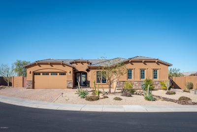 Cave Creek Single Family Home For Sale: 32510 N 60th Way