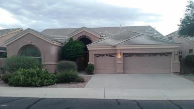Scottsdale Single Family Home For Sale: 9719 E Voltaire Drive
