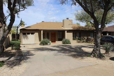 Phoenix Single Family Home For Sale: 336 E Verde Lane