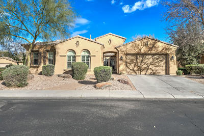 Chandler Single Family Home For Sale: 3730 E San Mateo Way