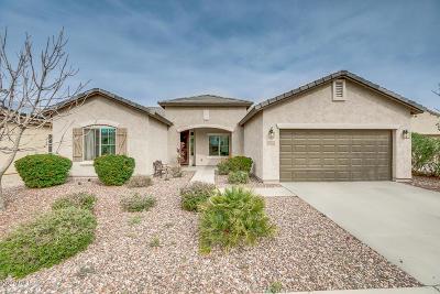 Florence AZ Single Family Home For Sale: $252,000