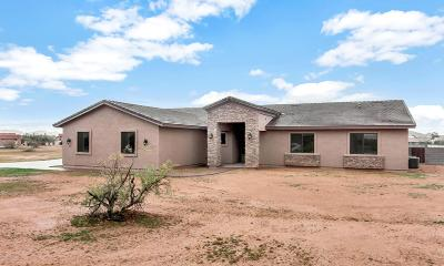 Phoenix Single Family Home For Sale: 21 W Cloud Road