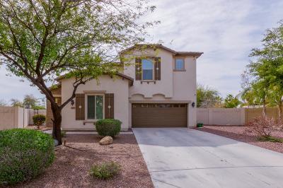 Single Family Home For Sale: 4739 W Buckskin Trail