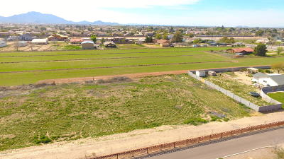 Gilbert Residential Lots & Land For Sale: E Twin Acres Drive