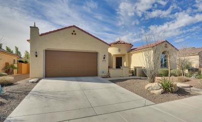 Sun City Festival Single Family Home For Sale: 26715 W Sierra Pinta Drive